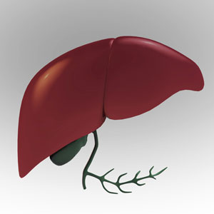 HCC risk remains high with hep B antivirals