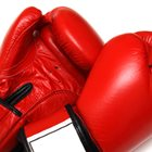 Call for ban on boxing after fighter's death