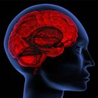 Alcohol abuse overlooked in younger-onset dementia