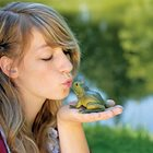 Myth? You can catch warts from kissing a frog