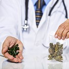 Aussie pharmacists set to dispense cannabis
